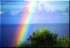 Мария - цветовете в живота