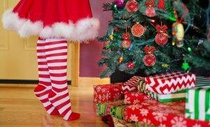 Цветовете на Коледа